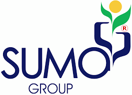Position: Design Engine Sumo Construction and Engineering Private Limited